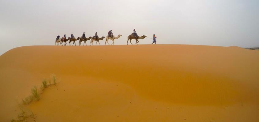 SAHARA DESERT. YOU GORGEOUS THING YOU. (PHOTOS)